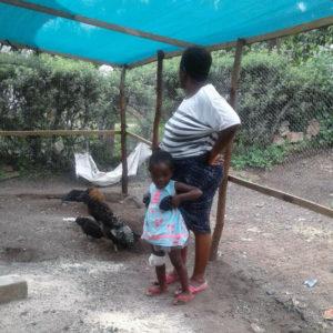 (2017) Musole, Kabwe, Zambia, Slow Food, Mw. Phiri, traditionele kippen